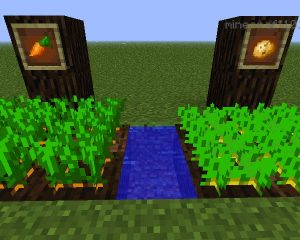 minecraft carrot farm